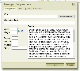 Image Properties part of the Content Management / Image Management