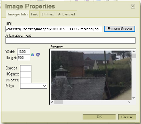 Image Properties in the Content Management System